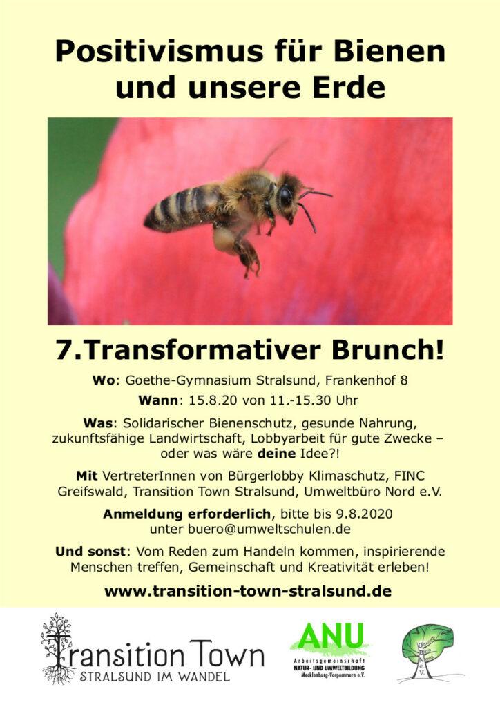 Positivismus für Bienen und unsere Erde